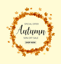 Colorful autumn leaves and sale text fall season vector