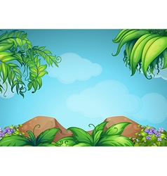 Scene with rocks and vine vector