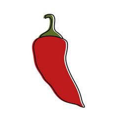 chili pepper vegetable icon image vector image vector image