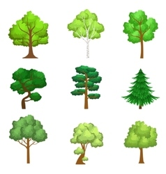 Realistic trees set vector