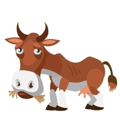 Sad brown cow in cartoon style isolated vector image vector image