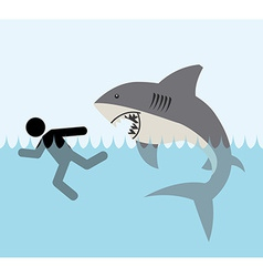 Shark zone vector