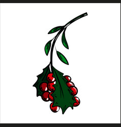 Color sketch holly branch and red berries vector