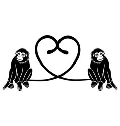Animal love couple of cute monkeys shaped heart of vector