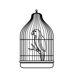 cute bird parrot in cage mascot vector image