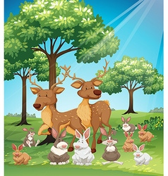 Deers and rabbits in the field vector image