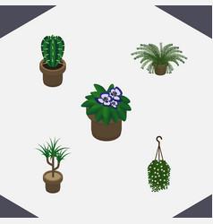 Isometric flower set of blossom plant flowerpot vector