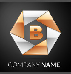 letter b logo symbol in the colorful hexagon on vector image vector image