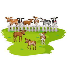 Many cows on the farmyard vector