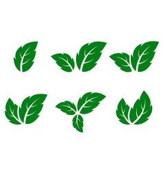Green leaf icons set vector