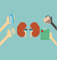 concept of health - treatment of kidney vector image vector image
