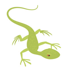 little lizard icon cartoon style vector image vector image