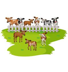 Many cows on the farmyard vector