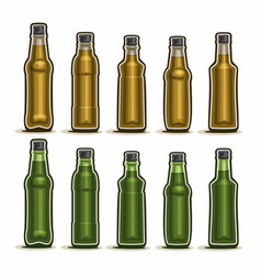 Set of glass bottles vector
