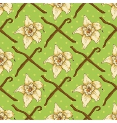 Seamless pattern with vanilla flower vector