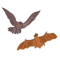 Halloween owl and bat vector