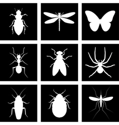 Icons insects vector