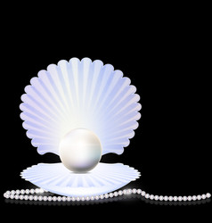 beads and shell vector image
