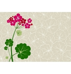 Geranium background vector image vector image