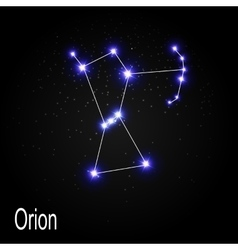 Orion Constellation with Beautiful Bright Stars on vector image