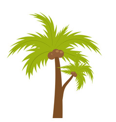 Palm tree icon flat cartoon style summer beach vector