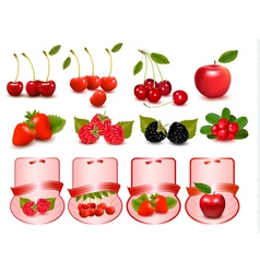 Big set with fruits and labels vector