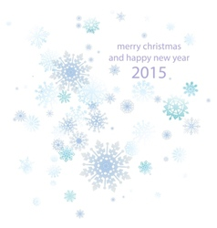 Elegant Christmas background with snowflakes place vector image vector image