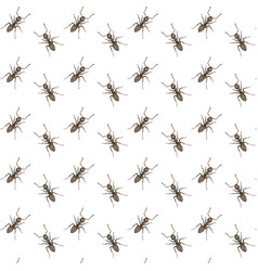 hand drawn ants seamless pattern vector image