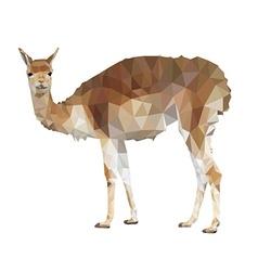 Llama polygonal style vector