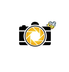 Photography logo with cute honeybee vector