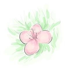 Rosy flower sketch vector image
