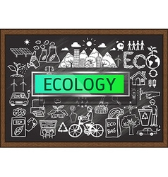 Ecology on chalkboard vector
