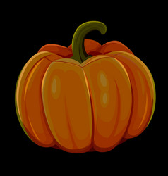 halloween pumpkin isolated on black background vector image vector image