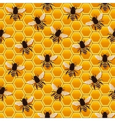 Bee honeycomb pattern vector