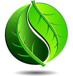 Green Logo - Yin Yang LEAF Symbol vector image vector image