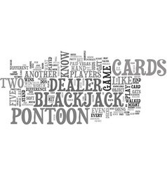 What is pontoon text word cloud concept vector