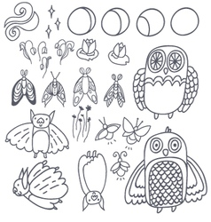 Set with owls bats fireflies and moths vector