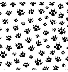 dog foot prints vector image