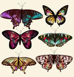 Realistic butterflies for design vector