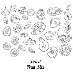 Set of dried fruit black and white vector