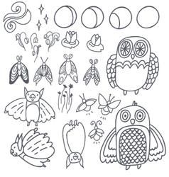Set with owls bats fireflies and moths vector