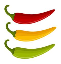 Three multicolored chili peppers vector
