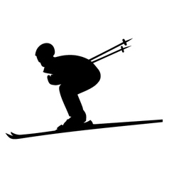 Skier image vector