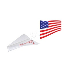 plane with american flag vector image vector image