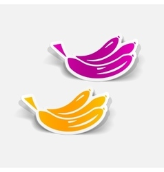 Realistic design element banana vector