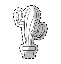 Isolated cactus design vector image