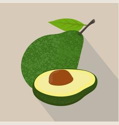 Avocado isolated flat style vector