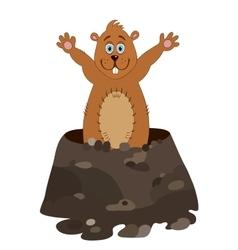 Funny groundhog cartoon vector image