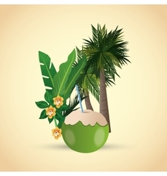 Tropical design flower concept coconut icon vector