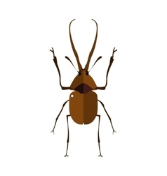A stag beetle vector